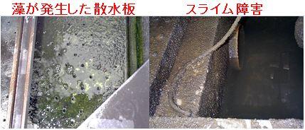藻障害,スライム障害